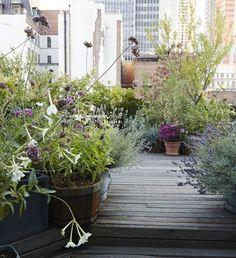 manhattan-roof-garden-decking-potted-plants-gardenista