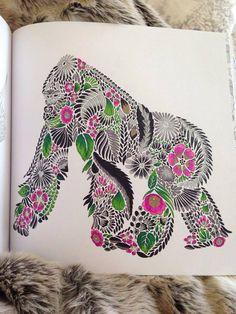Coloring Inspiration Animal Kingdom By Millie Marotta