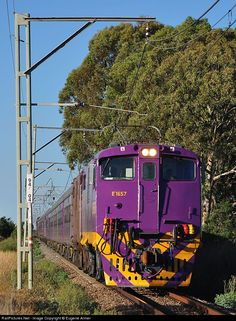 RailPictures.Net Photo: E1657 & E1496 Transnet Freight Rail Class 6E1 at Boskop, North West Province, South Africa by Eugene Armer