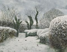 David Gentleman - Suffolk garden under snow,  watercolour 2008