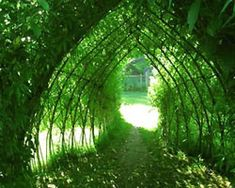 Growing an outdoor playhouse from pole beans, sweat peas, or weaving willows...awesome! #gardenplayhouse