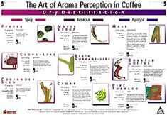 Art of Aroma DRY DISTILLATION