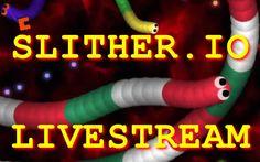 Slither.io first livestream