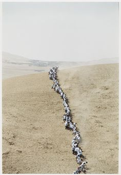 Francis Alÿs. Untitled, from When Faith Moves Mountains. 2002. Color photograph…