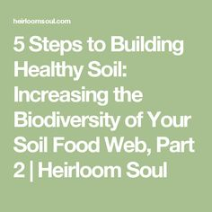 5 Steps to Building Healthy Soil: Increasing the Biodiversity of Your Soil Food Web, Part 2 | Heirloom Soul