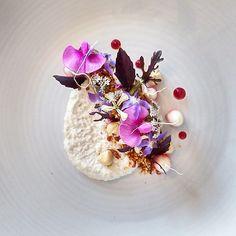 Witloff, Sesame, Smoked Paprika & Parmasean Crumb, Hazelnut Spread, Beet Get w/ Herbs & Flowers by Josh Retzer (joshretzz) on IG #plating #gastronomy