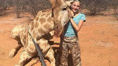 Une chasseuse de 12 ans tue une girafe et s'attire les foudres du web