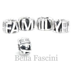 35489f489 A Perfect Gift - WE ARE FAMILY Bella Fascini European Charm Bracelet Bead -  Intricate Detail - Solid Sterling Silver - The Perfect Family & Friend Gift  ...
