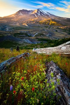 Explore Mount St. Helens National Volcanic Monument - Share the Experience photo by Inge Johnsson #bucketlist