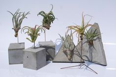 Planter collection by PLANTRA
