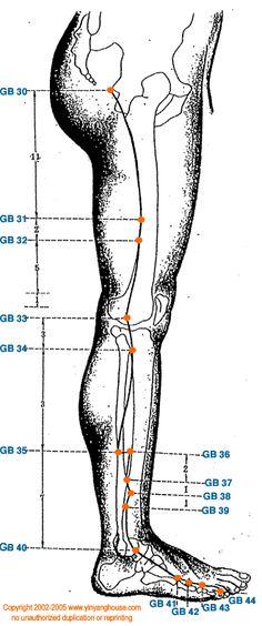 recorrido del #meridiano de vesícula biliar - parte de la pierna - #acupuntura #medicinachina