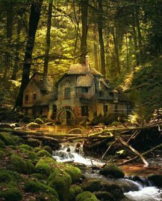 Black Forest Germany Abandoned Places Houses Castles Haunted Hobbit