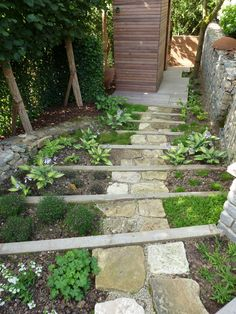 Escalier pierre et bois jardin et for t for Jardin foret