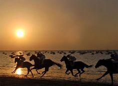 Sanlucar horses  Carrera en la playa Sanlucar  ¿Habéis visto alguna vez una carrera de caballos en la playa a la caída del sol? No hay nada igual  LAS CARRERAS DE CABALLOS DE SANLÚCAR CUMPLEN 170 AÑOS DE HISTORIA    El espectáculo comienza cuando cae la tarde y baja la marea. Son las carreras de caballos de Sanlúcar de Barrameda, aquellas que nacieron para acarrear el pescado hace siglo y medio y que hoy están declaradas de interés turístico internacional.