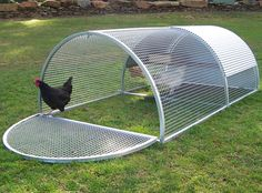 Royal Rooster Chicken Coops - Chicken Roll Coop - Suits 4-6 Chickens                                                                                                                                                                                 More