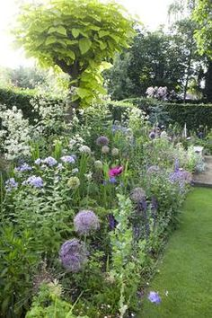 Mooie border met een lange bloeitijd: plantenlijst zit erbij