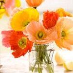 Flowers in glass jars.  Live lusciously with LUSCIOUS: www.myLusciousLife.com