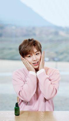 Wanna One x Innisfree: Wanna One Go in Jeju Park Jihoon Wallpaper Innisfree, Produce 101, Cute Wallpapers, Lock Screen Wallpaper, Guan Lin, Lai Guanlin, Kim Jaehwan, Lee Daehwi, Exo Chanyeol