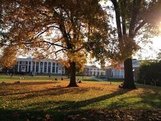 University of Virginia grounds - Google Search