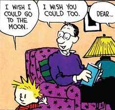 Calvin and Hobbes, This is how I would parent