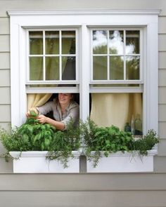 Small- Space Garden Ideas, Love the look of window boxes! :)