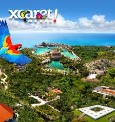 Xcaret México Espectácular presents the country's history—from pre-Hispanic times to today—through nightly reenactments and classic dances. One highlight inspired by the state of Michoacán: The Dance of the Old Men, in which masked dancers mimic men stomping in protest of old age. Tickets include entry to the enormous Xcaret park complex three hours before the show, meaning you have time to walk through the folk art museum or visit some of the resident manatees and macaws. Carr. Federal, km…