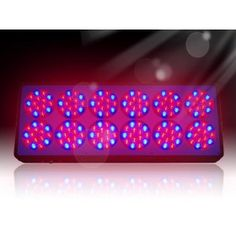 Purchase Apollo 12 LED Grow Lights For Greenhouse Growing Lights DE, Built-in hanging hardware, easy to set up in minutes, Plug N Play. Greenhouse Growing, Mini Greenhouse, Hydroponic Tomatoes, Grow Lamps, Hydroponics System, Led Grow Lights, Growing Tomatoes, Power Led, Indoor Plants