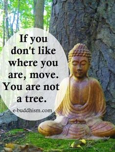 Top 100 Inspirational Buddha Quotes And Sayings - Page 2 of 10 - BoomSumo Quotes Buddhist Quotes, Spiritual Quotes, Wisdom Quotes, Positive Quotes, Life Quotes, Funny Quotes, Zen Quotes, Spiritual Health, Usui Reiki