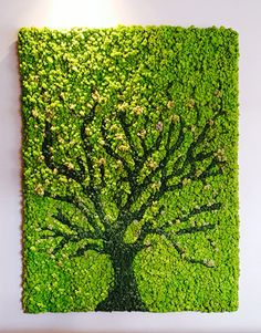 Moss is the new Art! Re-define your living spaces with Uniflora's Moss Walls! Reach out to us for Moss Wall Installation queries by mailing us at enquiries or call us on Interior Design Plants, Plant Design, Garden Design, Moss Wall Art, Moss Art, Succulent Wall Art, Plant Wall, Moss Garden, Garden Art