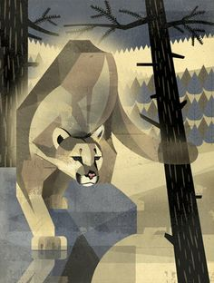Mountain Lion by Dieter Braun - This would be a good piece for the students to reproduce on a grid.