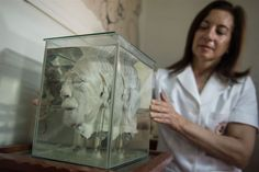 "Doctor Diana Rivas holds a glass container with a human head immersed in formaldehyde at the ""Museum of Neuropathology"" in Lima on November 16, 2016. The ""Museum of Neuropathology"" at the Santo Toribio de Mogrovejo hospital bears a collection of 290 brains and offers an unusual journey by encephalic masses unrevealing the secrets of the most complex organ of the human body."
