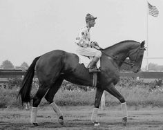October 13, 1956 - Reigning Horse of the Year NASHUA ran in the final race of his career. His victory in the Jockey Club Gold Cup capped a brilliant career that included the Preakness and Belmont, made him the richest thoroughbred to that time, and led to an induction into the National Museum of Racing Hall of Fame.