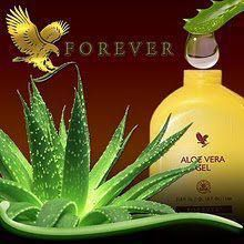 The miraculous Aloe leaf has been found to contain more than 200 compounds. A product of our patented Aloe stabilization process, our gel is favored by those looking to maintain a healthy digestive system and a natural energy level.