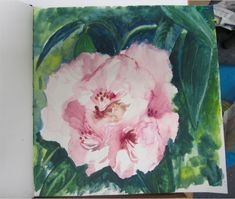 Rhododendron at Attadale Art Courses, Scottish Highlands, Sketching, Art Decor, Fine Art, Artist, Painting, Inspiration, Biblical Inspiration