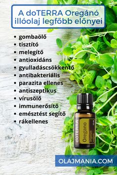 Doterra, Herbs, Personal Care, Self Care, Personal Hygiene, Herb, Doterra Essential Oils, Medicinal Plants