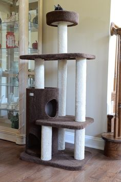 THE DESIGNER CARPETED CAT TREE BY ARMARKAT – FREE SHIPPING AND TAX INCLUDED on all designer cat trees.  No hidden fees on our website. Add style to your home with our luxury cat furniture.  Watch your kitties play and have fun our cat trees/cat condos. Shop now from and add style to your home with our luxury cat trees. These can also be used as scratching posts too! ON SALE TODAY!  #cat #cattree #designercattree #catcondo #kittycondo #scratchingpost #designerpetfurniture
