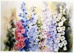 Watercolour painting of a colourful variety of delphiniums.