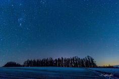 starlight biei Winter of Biei.  Night when temperature will be -10 degree.  Empty was a starlit sky of the whole sky