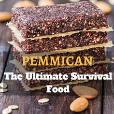 Pemmican The Ultimate Survival Food