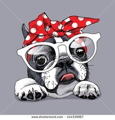 The major breeds of bulldogs are English bulldog, American bulldog, and French bulldog. The bulldog has a broad shoulder which matches with the head. Boston Terrier Kunst, Boston Terrier Love, French Bulldog Art, French Bulldog Puppies, French Bulldog Cartoon, Illustration, Cute Cartoon, Cute Art, Unicorn Art