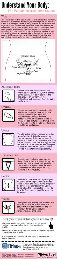 Understand your Body: Female Reproductive System