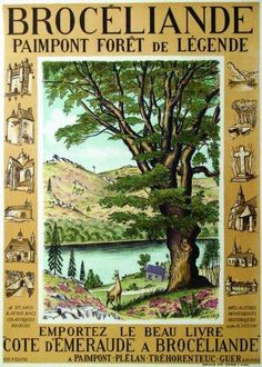 """Brocéliande - Paimpont : forêt de légende - Emportez le beau livre """"Côte d'Emeraude à Brocéliande"""" - illustration de Daniel Dervaux -"""