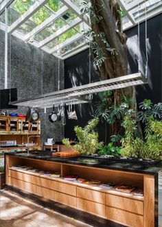 I mean, how cool is this kitchen? So many elements, the custom pot rack to match the island, the natural light, the tree!?!?