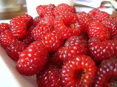 산딸기 (mountain strawberries)