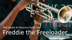 Freddie the Freeloader - Phil Harper - Jazz Trumpet Best Ever - PLAYaudio