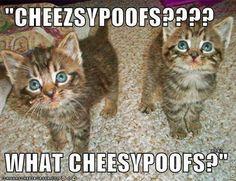 What cheez puffs?