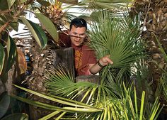 A cacher at the 2013 Texas Challenge in Port Aransas finds treasure among palm fronds on West Cotter Avenue. The 2014 event takes place in B...