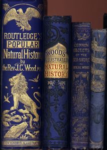 Natural History Books by Victorian Rev. J.G. Wood