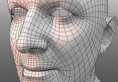 intro3D_topology.jpg (648×450)