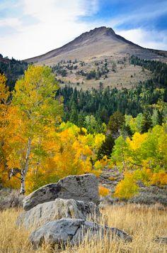 Boulders, Aspens, Stevens Peak (Hope Valley 2012)